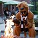 The Nittany Lion sits in Penn State New Kensington courtyard